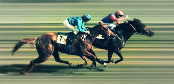 caballo-carrera-alimento